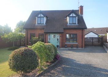 Thumbnail 4 bed detached house for sale in Parklands, Antrim