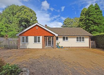 Thumbnail 4 bed bungalow for sale in St Raphaels, Buxted