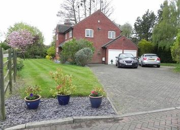 Thumbnail 4 bedroom detached house for sale in Leicester Road, Sharnford, Hinckley