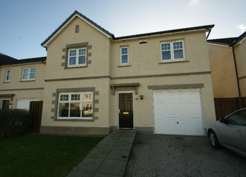 Thumbnail 4 bed detached house to rent in Morrisons Croft Crescent, Bridge Of Don, Aberdeen, 8Fg