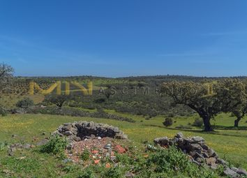 Thumbnail Farm for sale in Close To Almodôvar, Portugal