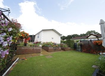 Thumbnail 2 bed bungalow for sale in Emms Lane, Brooks Green, Horsham