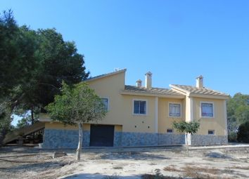 Thumbnail 4 bed finca for sale in Spain, Valencia, Alicante, Algorfa