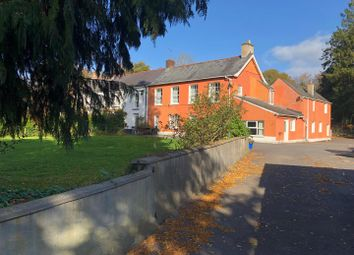 Thumbnail 4 bed property for sale in Brecon Road, Llandovery