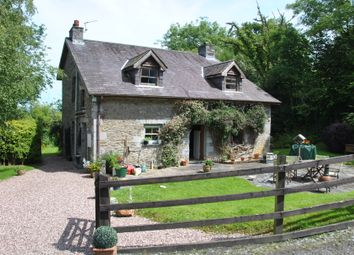 Thumbnail 3 bed detached house for sale in Taliaris, Llandeilo