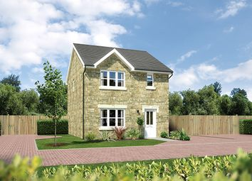"Thumbnail 3 bedroom detached house for sale in ""Castlevale"" at Hunter Street, Auchterarder"