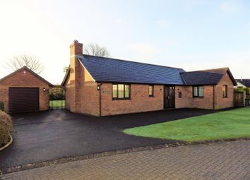 Thumbnail 4 bed detached bungalow for sale in St. Johns Drive, Bradworthy, Holsworthy