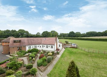 Thumbnail 6 bed detached house for sale in Horseshoe Lane, Beckley, Rye