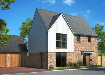 Thumbnail 3 bed detached house for sale in Manor Road, St Nicholas-At-Wade