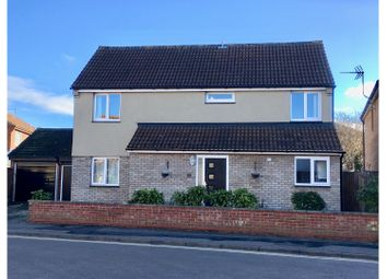 Thumbnail 4 bed detached house to rent in Meadow Grass Close, Colchester