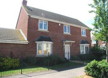 Thumbnail 4 bed property to rent in Westlake Ave, Hampton Vale, Peterborough