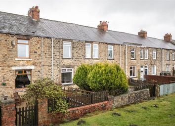 Thumbnail 3 bed terraced house for sale in Greencroft Terrace, Stanley, Durham