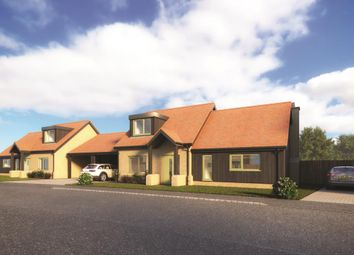 Thumbnail 3 bed detached house for sale in West End, Haddenham, Ely