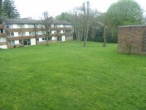 Thumbnail 2 bed flat to rent in Enderley House, Sylvan Road, Crystal Palace, London
