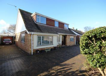 Thumbnail 3 bed detached bungalow for sale in Long Lane Close, Holbury, Southampton