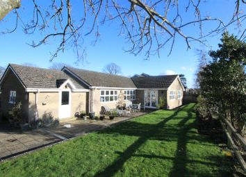 Thumbnail 4 bed detached bungalow for sale in Kneeton Park, Middleton Tyas, Richmond