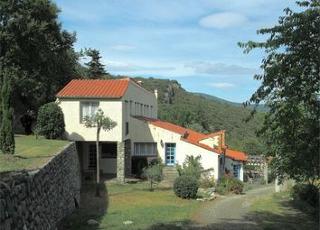 Thumbnail 12 bed property for sale in Montferrer, Languedoc-Roussillon, 66150, France