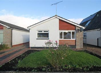 Thumbnail 3 bedroom detached bungalow for sale in Chattan Avenue, Causewayhead, Stirling