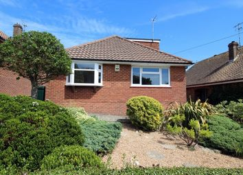 Thumbnail 3 bed detached bungalow to rent in Selhurst Road, Brighton