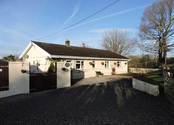 Thumbnail 3 bed property for sale in Cwmfelin Road, Betws, Ammanford