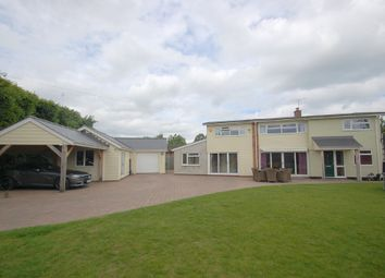 Thumbnail 5 bed detached house for sale in Love Lane, Brightlingsea, Colchester