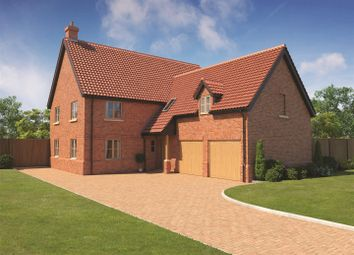 Thumbnail 5 bed detached house for sale in Poppyfields, East Harling