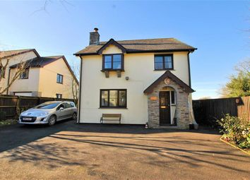 Thumbnail 3 bed detached house for sale in North Street, Sheepwash, Devon