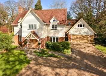 Thumbnail 5 bed detached house for sale in Cackle Street, Brede, Rye
