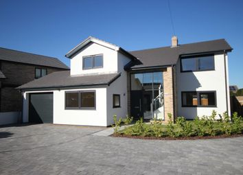 Thumbnail 4 bed property to rent in West Fen Road, Ely