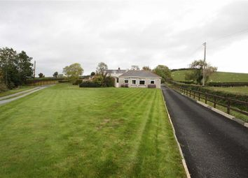Thumbnail 3 bed detached bungalow for sale in Downpatrick Road, Ballynahinch, Down