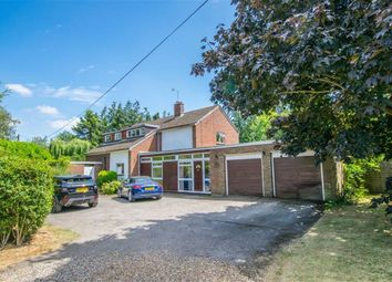 Thumbnail 4 bed detached house for sale in Birch Green, Hertford
