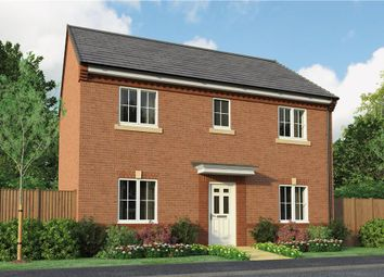 "Thumbnail 4 bed detached house for sale in ""The Buchan"" at Park Road South, Middlesbrough"