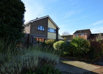 Thumbnail 3 bed detached house to rent in Goose Green East, Beccles