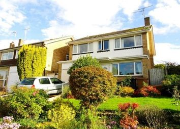 Thumbnail 4 bed detached house to rent in Pertwee Drive, Great Baddow, Chelmsford