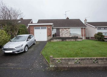 Thumbnail 3 bedroom terraced bungalow for sale in 8, Glennor Crescent, Belfast