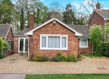 Thumbnail 4 bed detached bungalow for sale in Lady Lodge Drive, Orton Waterville, Peterborough