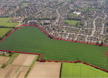 Thumbnail Land for sale in Development Site, Buxton Road, Norwich