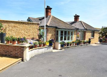 Thumbnail 6 bed bungalow for sale in Hill Close, West Bay, Bridport, Dorset