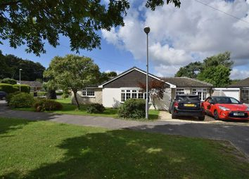 Thumbnail 4 bed detached bungalow to rent in Smugglers Lane North, Highcliffe, Christchurch