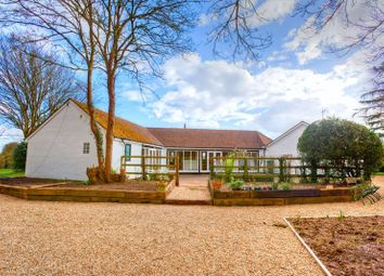Thumbnail 3 bed property to rent in Hebing End, Benington, Stevenage