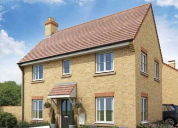 Thumbnail 3 bed detached house for sale in Holbrook Grove, Biggleswade