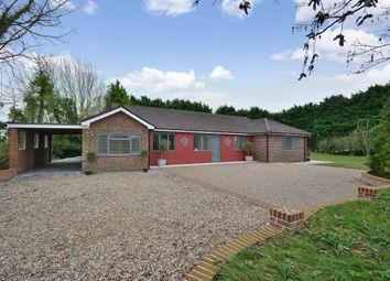 Thumbnail 5 bed bungalow to rent in Stanbourne Road, Stanbourne Road, Little Sampford