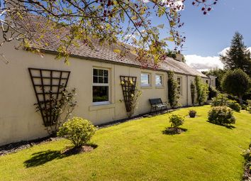 Thumbnail 5 bed cottage for sale in Careston, Nr Brechin, Brechin, Angus