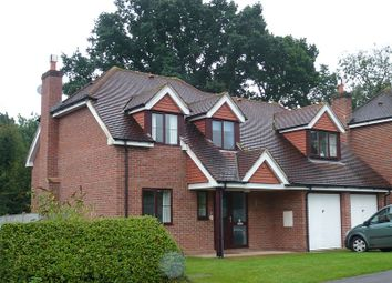 Thumbnail 4 bed detached house to rent in Gore End Road, Ball Hill, Berkshire