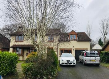 Thumbnail 5 bed detached house to rent in Shepherd Drive, Langstone, Newport.
