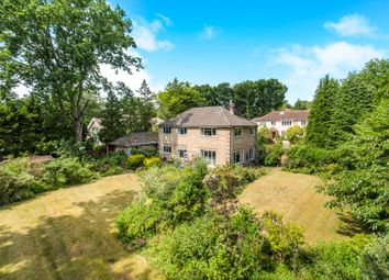 Thumbnail 4 bed detached house for sale in Roundhill, Woking, Surrey