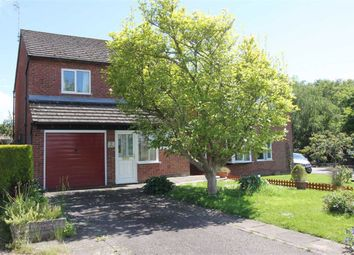 Thumbnail 4 bed detached house for sale in Blackthorn Close, Greytree, Ross-On-Wye