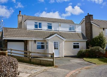 Thumbnail 3 bed detached house for sale in St Giles On The Heath, Launceston, 95J