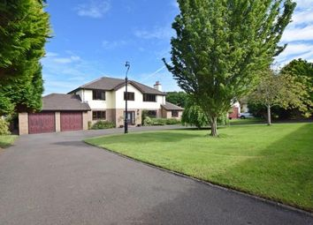Thumbnail 6 bed property for sale in Farmhill Park, Douglas