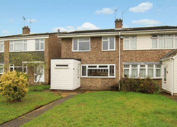Thumbnail 4 bedroom detached house to rent in Brockwell Walk, Wickford